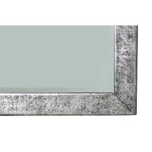 Pewter Reflection