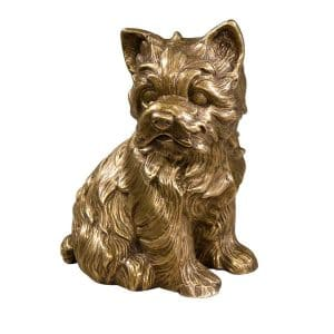 Ernest, A Puppy